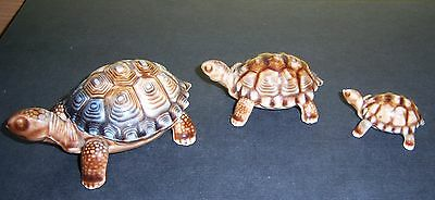 Vintage Wade Tortoises X 3 With The Largest Being A Trinket Box