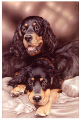 GORDON SETTER DOG FINE ART LIMITED EDITION PRINT - Paul Doyle - Sold Out Edition