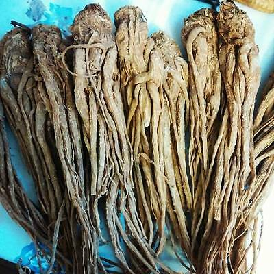 One Master Root-Hoodoo, Wicca, Pagan-St. Michael-Protection, Power, Luck
