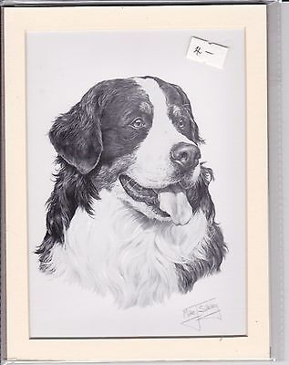 """8"""" X 6"""" MOUNTED  LITHOGRAPH PENCIL DRAWING PRINT of A BERNESE MOUNTAIN HEAD"""