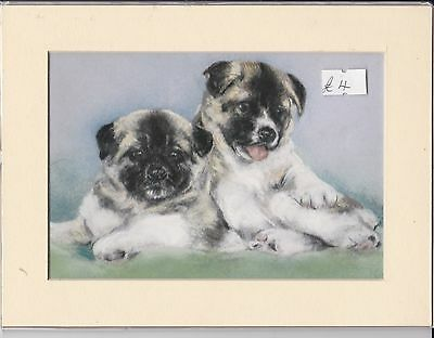 """8"""" X 6"""" MOUNTED  LITHOGRAPH PAINTING PRINT of TWO AKITA PUPPIES"""
