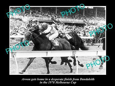 Old Large Horse Racing Photo Of Arwon Winning The 1978 Melbourne Cup