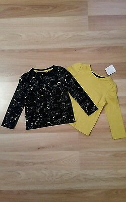 Baby Girls 2 pk Long Sleeve Summer T-Shirts age 9-12 months  ( new )