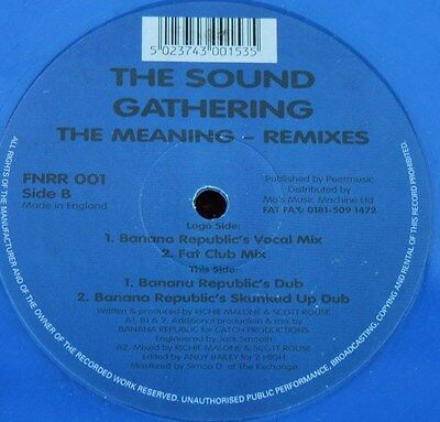 """THE SOUND GATHERING * THE MEANING * Classic House 12"""" Blue Vinyl"""