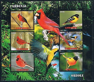 Bloc Sheet Oiseaux Birds  Neuf MNH ** IMP  Comores  2016 Private  local/issue