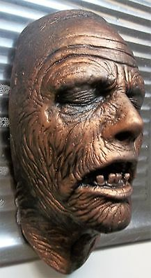 life size bust bub bust. day of the dead. life face cast prop