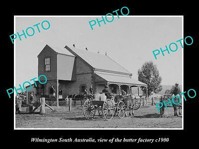 OLD LARGE HISTORIC PHOTO OF WILMINGTON SA, VIEW OF THE BUTTER FACTORY c1900