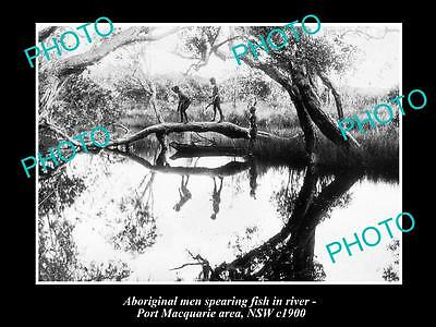 OLD LARGE HISTORICAL PHOTO OF ABORIGINAL MEN SPEAR FISHING IN RIVER, NSW c1900