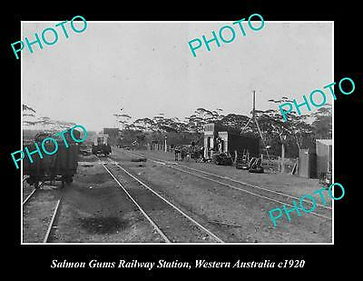 Old Large Historic Photo Of Salmon Gums Railway Station, Western Australia 1920