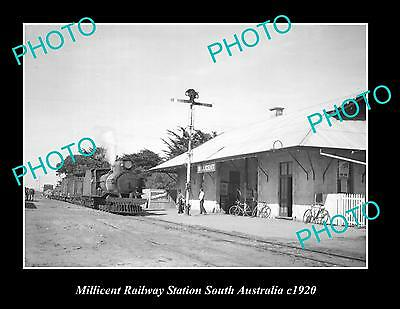 OLD LARGE HISTORIC PHOTO OF MILLICENT RAILWAY STATION, SOUTH AUSTRALIA c1920
