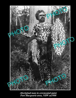 OLD LARGE HISTORIC PHOTO OF NSW ABORIGINAL, MAN IN CERIMONIAL PAINT c1900