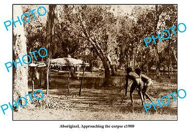 OLD LARGE PHOTO, AUSTRALIAN ABORIGINALS, APPROACHING THE CORPSE c1900