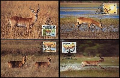 Botswana WWF Red Lechwe 4 official Maxicards