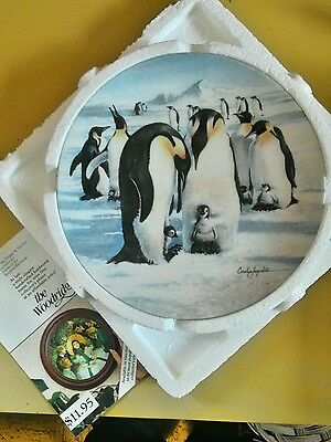 Penguin collector plate Baby-sitters #807A