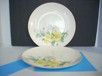 Vintage Knowles China Plates X 4011 Usa Yellow White Flowers Set Of 2  (E6)