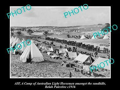 OLD LARGE HISTORICAL PHOTO OF AIF ANZAC, THE AUST LIGHT HORSE CAMP, BELAH c1916