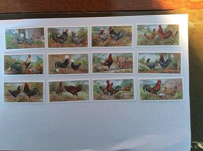 A complete set of POULTRY cigarette cards