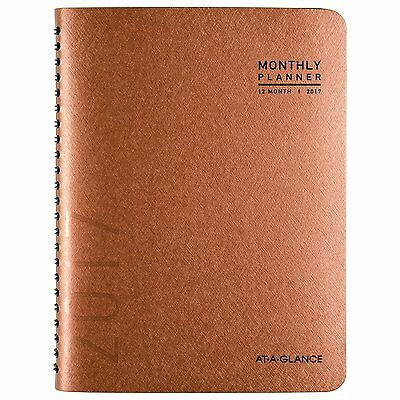 AT-A-GLANCE 70-260X-70 Monthly Planner/Appoint Book 2017, 8-7/8 x 11, Copper