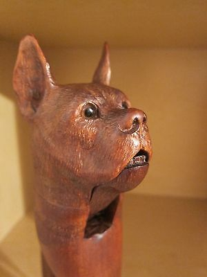Antique Black Forest Carved Wood Dog Head Nutcracker Wooden With Glass Eyes