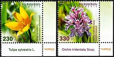 ARMENIA 2016-20 FLORA: Protected Plants / Flowers. Post-CORNERS, MNH