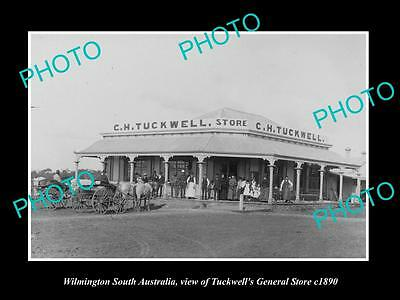 OLD LARGE HISTORIC PHOTO OF WILMINGTON SOUTH AUSTRALIA, THE TUCKWELL STORE c1890