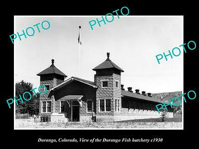 OLD LARGE HISTORIC PHOTO OF DURANGO COLORADO, VIEW OF THE FISH HATCHERY c1930