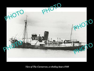 OLD LARGE HISTORIC PHOTO OF THE AUSTRALIAN WHALING BOAT, THE CANARVON c1940