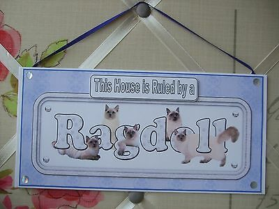 Handmade Ragdoll Cat This House Ruled by a Hanging Sign Plaque Card Blue Kitten