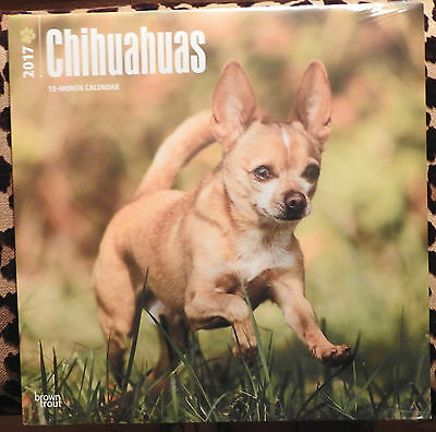 2017 Brown Trout CHIHUAHUA 18 Month CALENDAR w/Free DogDays App Sealed & New!!