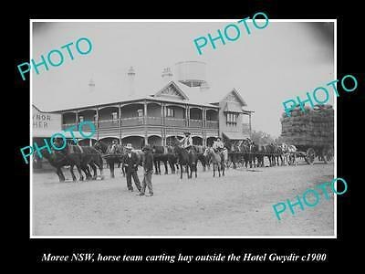 OLD LARGE HISTORIC PHOTO OF MOREE NSW, HORSE TEAM OUTSIDE HOTEL GWYDIR c1900