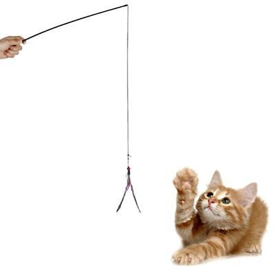 Chat Chaton Exercice Jouet Dangler Tige Corde + Bell Grelot Plume