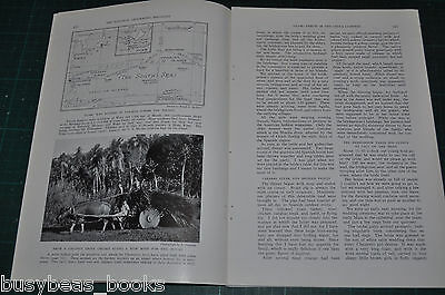 1938 magazine article, GUAM, natives, history, American woman's viewpoint
