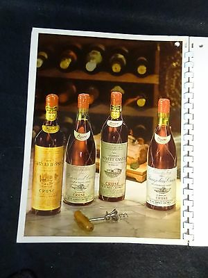 Vintage WINE FACTS Advertising Book GREAT GLOSSY Decorative Pictures for FRAMING