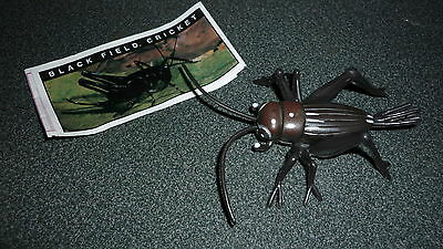 Colectable Australian Yowie Toy With Papers, Black Field Cricket
