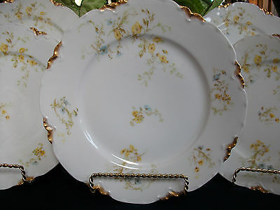 HAVILAND #9196 (c.1907+) LUNCH PLATE(s)- YELLOW/BLUE FLORAL- RARE! BEAUTY! GILT!