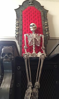 Quality Halloween 5 Ft Life Size Hanging Skeleton  Prop Decoration Full Size