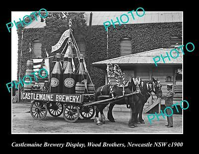 Old Large Historic Photo Of Castlemaine Brewery Wood Bros Display Newcastle 1900