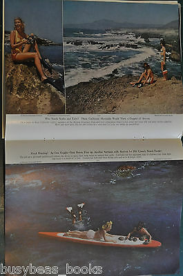 1949 magazine article CALIFORNIA GOOGLE FISHING, Skin diving, color photos