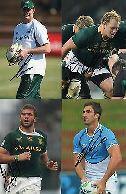 South Africa Signed Rugby Photos x 4.Erasmus,Cilliers,Taute + Pienaar.
