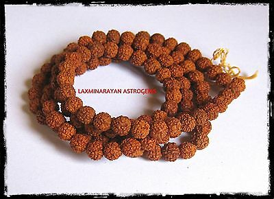 Rudraksha Mala Holy Hindu 108 + 1 Beads Rosary Mala 7 Mm Size Necklace Energized