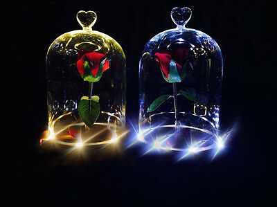 Beauty And The Beast Enchanted Rose Fairy Tale Belle Glass Dome Prop Heart 1 Set