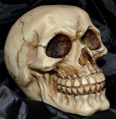 Nemesis Now Joker GOTHIC GRINNING HUMAN SKULL SCULPTURE Magic Wiccan Pagan