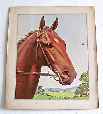 """Vintage Undated Unsigned """"man O' War"""" Race Horse Watercolor Print / 12.5 X 14"""