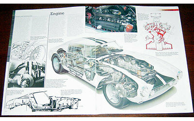 Ferrari 250 GT SWB Fold-out Poster + Cutaway drawing