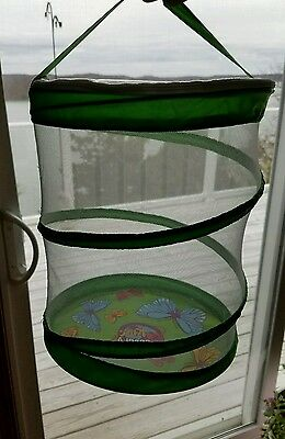 Discovery Kids 2005 Butterfly Garden Mesh Habitat Educational Toy