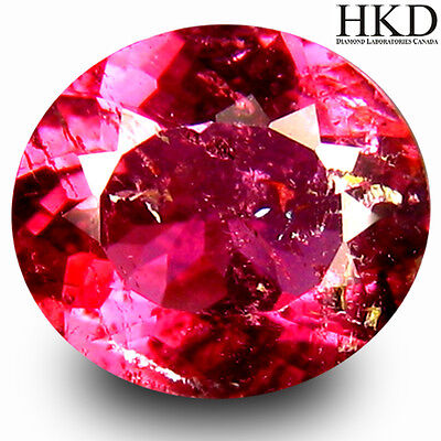 RUBELLITE TOURMALINE WITH HKD AUTHENTICATION  1.16Ct  MF4866