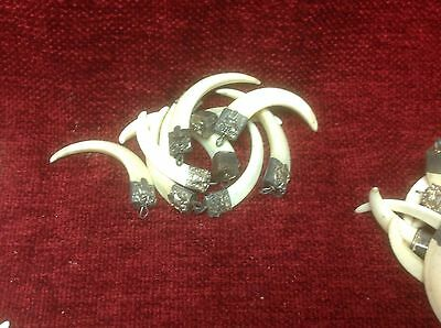 WILD BOAR TOOTH - FANG PENDANT - solid silver mounts LARP ,  ETHNIC