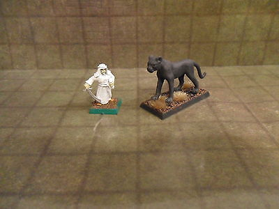 25mm / 28mm Primed Great Cat Type 2 Animal. Pathfinder Dnd Roleplaying. Minees