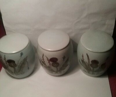 set of 3 Buchan stoneware jars vintage Thistle pattern with lid