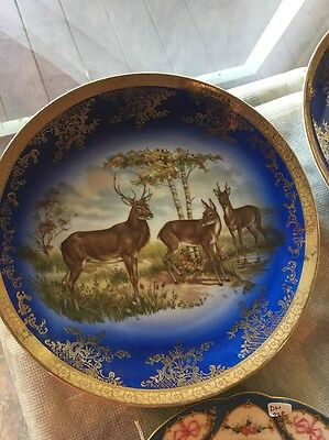 dh002 Large Bavarian Plate Hand Painted Buck Deer With A Gold Border Marked ST